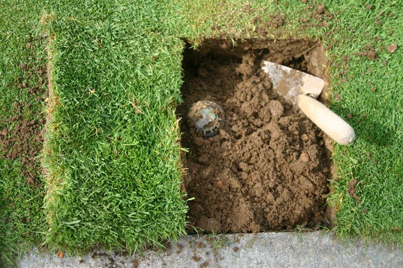 Sostituire un irrigatore senza danneggiare il prato for Prato senza manutenzione